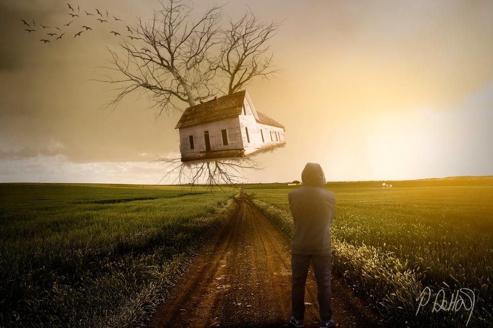 Flying House1